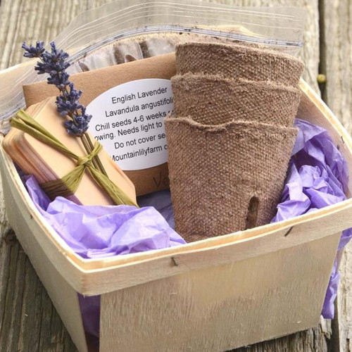 English Lavender Garden Gift Basket Kit