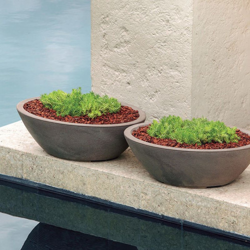 Delano Oval Bowl Planters with plants
