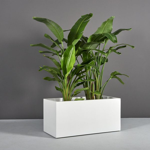 Badalona Rectangular Planter with plants