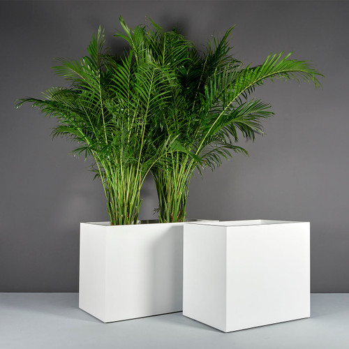 Brisbane Wide Rectangular Planters with plants
