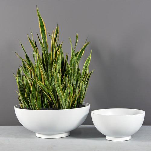 Marseille Bowl Planters with plants