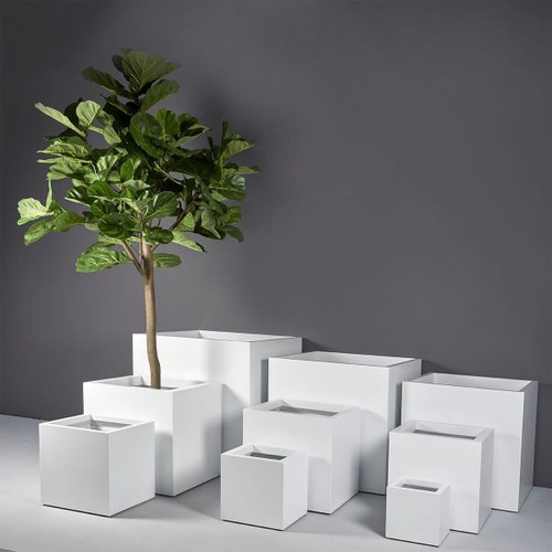 Montroy Cube Planters with Plants