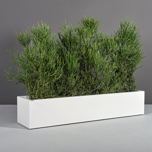 Narbonne Long Rectangular Planter with plants