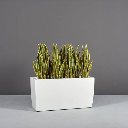 Panama Rectangular Tapered Planter with plants
