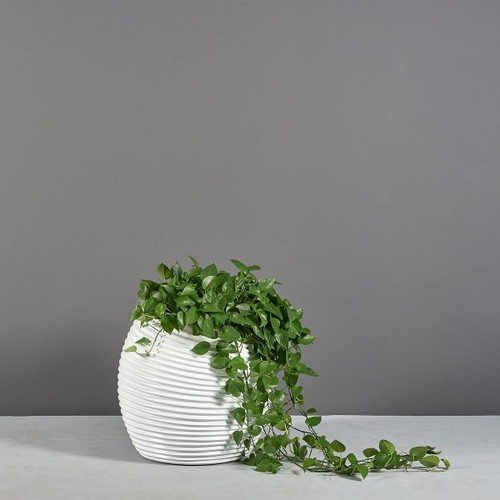Spiral Modern Globe Planter with plants