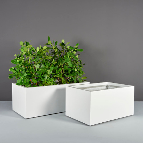 Torino Wide Rectangle Planters with plants