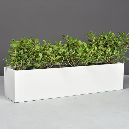 Vicksburg Rectangular Tabletop Planter with plants