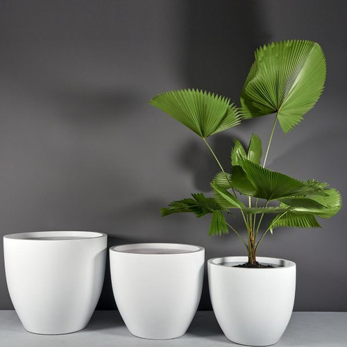 Wannsee Extra Large Round Planters with plants