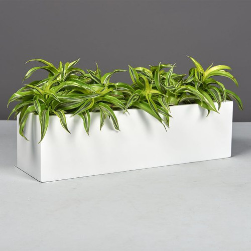 Weir Rectangle Tabletop Planter with plants