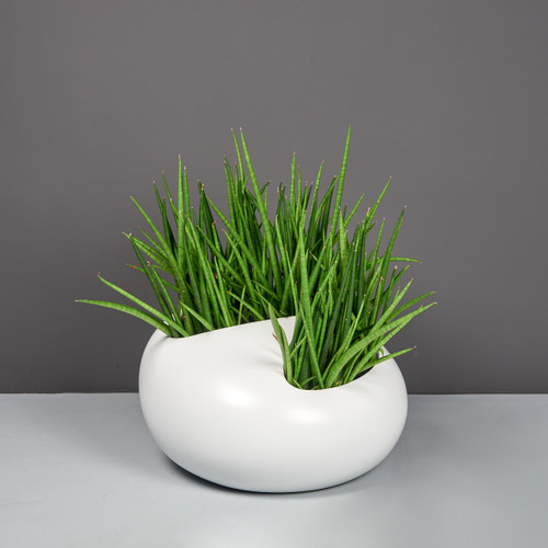 Large River Rock Planter with plants