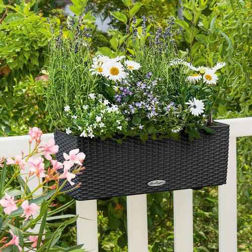 Balconera Cottage Rectangular Balcony Planter in Wooden Railing