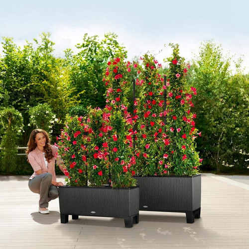 Trio Cottage Rectangular Planter With Pedestals and Trellises