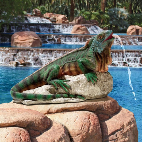 Ike, the Iguana Spitter Piped Statue in the Garden