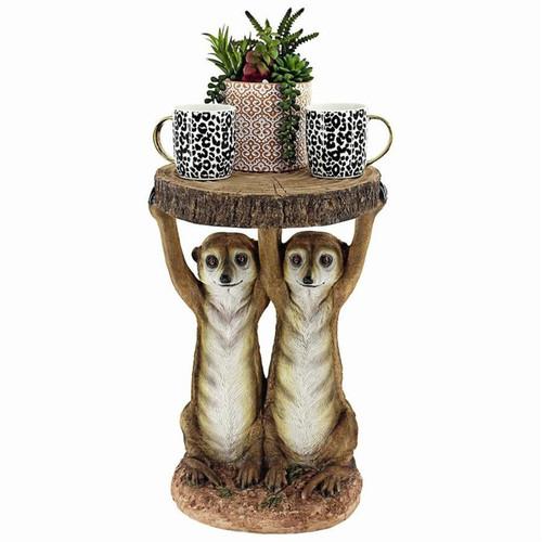 Kalahari Meerkat Maitre ds Plant Stand With Succulents & Planter