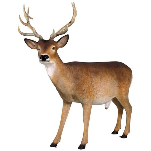 Forest White Tailed Buck, Male Deer Garden Statue
