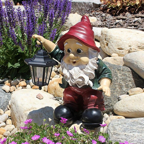 Edison with the Lighted Lantern Garden Gnome Statue in the Rock Garden