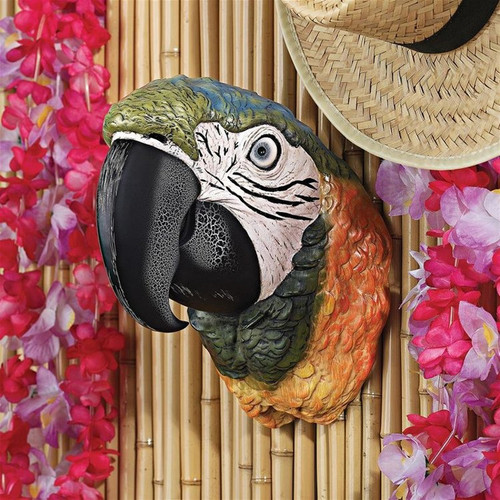 Paradise Parrot Head Wall Sculpture Hung on the Wall