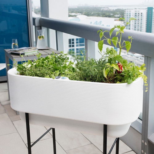 Nest Self-Watering Planter Up Close