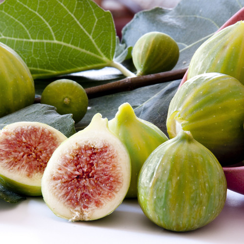 Tiger Fig Tree Fruit