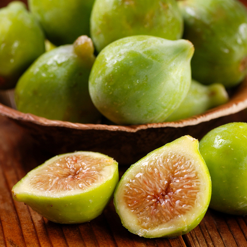 Champagne Fig Tree Fruit
