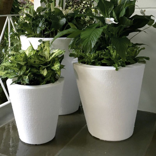 Dot Planters with plants
