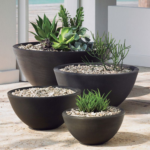 Delano Bowl Planter with plants