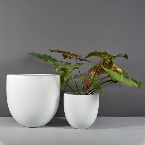 Alzira Bowl Planters