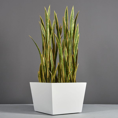 Bergen Tapered Square Planter with plants