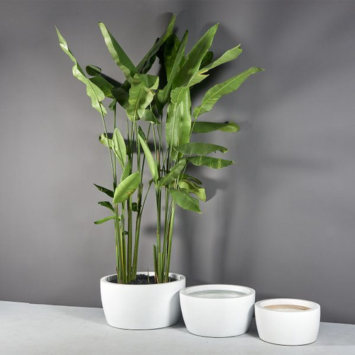Casablanca Bowl Planters with plants