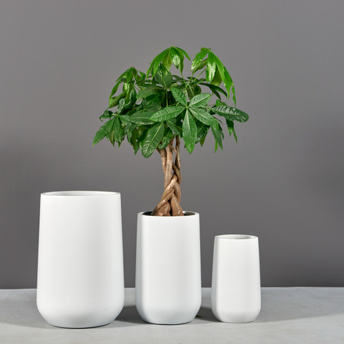 Hayden Tapered Round Planters with plants