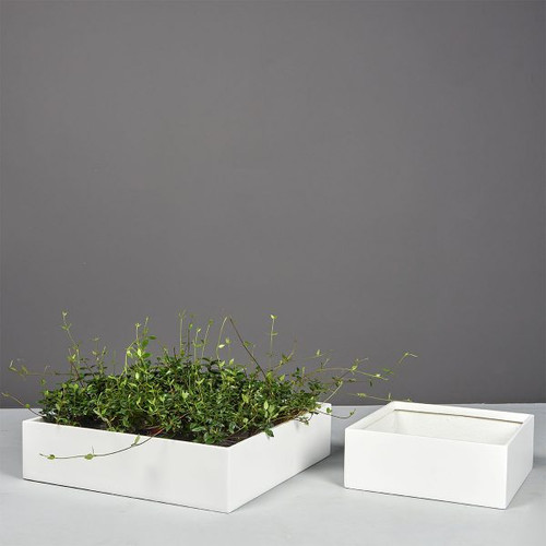 Ondara Square Tabletop Planters with plants