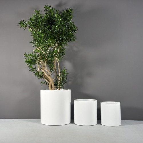 Rio Grande Cylinder Planters with plants