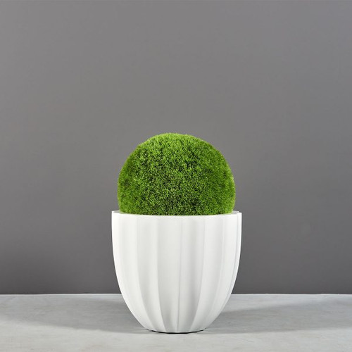Santa Barbara Low Ribbed Round Planter with plants