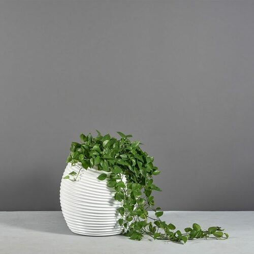 Spiral Modern Globe Planter with plants