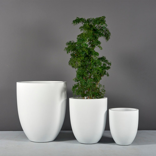 Valencia Tall Round Tapered Planters with plants