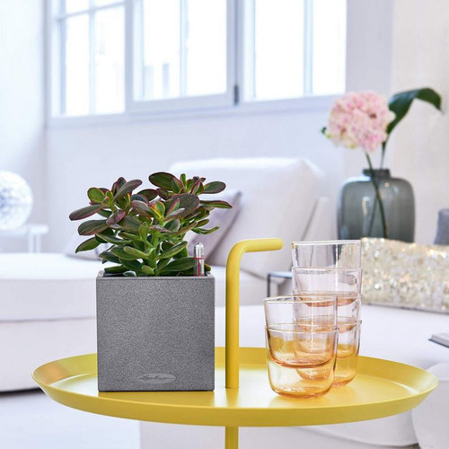 Canto Stone Small Cube Planter on Table