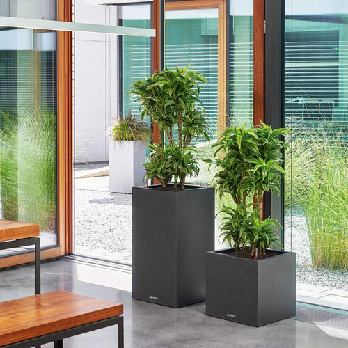 Canto Stone Tall Square Planter in the Office