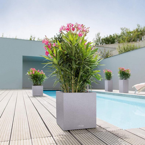 Canto Stone Short Cube Planter On The Deck