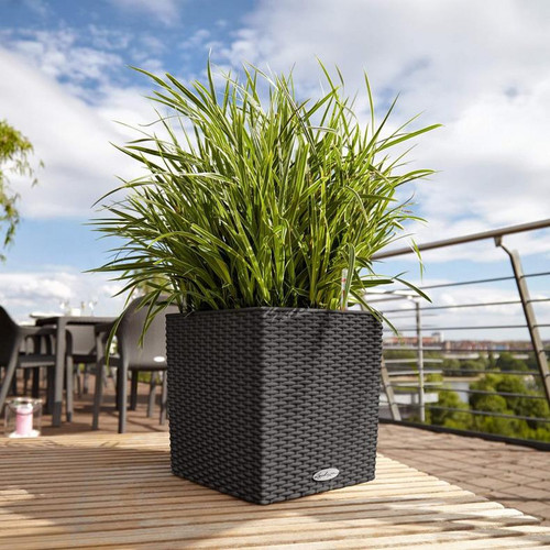 Cube Cottage Planter on the Deck