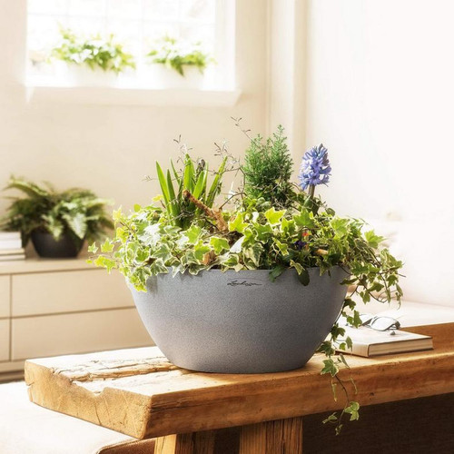 Cubeto Stone Bowl Planter on Indoor Table
