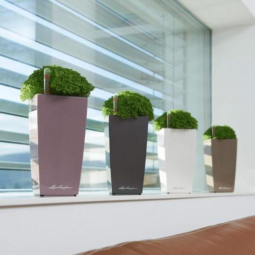 Cubi Square Planters in Window Sill