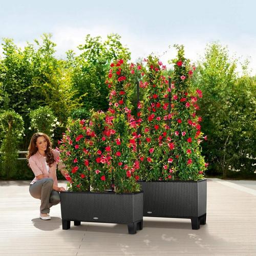 Trio Cottage Rectangular Planter With Pedestals and Trellises