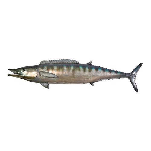 Wahoo Fish Wall Mount Trophy Sculpture