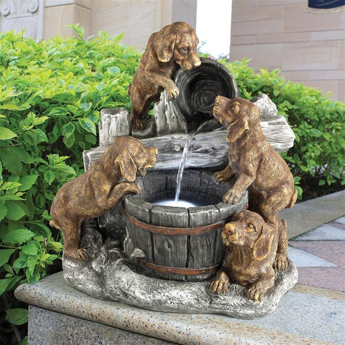 Puppy Pail Pour Dog Water Fountain in the Garden