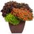 Blended Family Annual Combination in Garden Planter