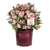 Autumn Belle Encore Azalea in Branded Pot