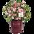 Autumn Belle Encore Azalea in Branded Pot