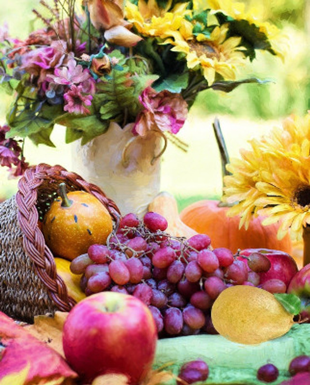 Popular Plants For Thanksgiving