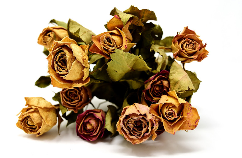 bouquet-of-dried-roses.jpg