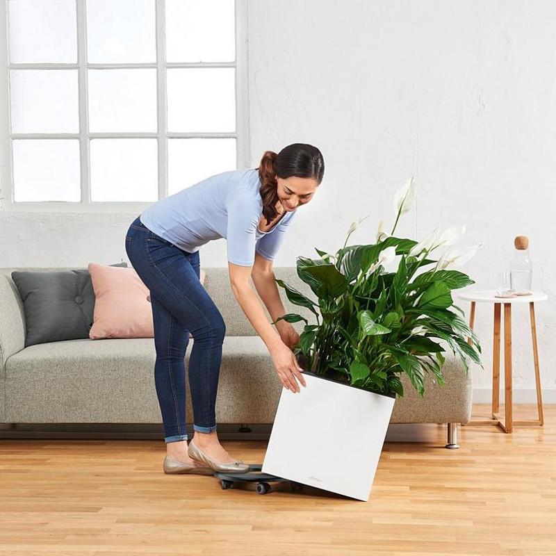 canto-premium-short-square-planter-coasters.jpg